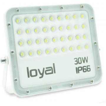 50W LED Flood Light Spotlight Garden Yard Square Outdoor 6000K Cool White US